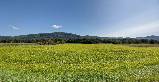 Bristol, VT: Catamount Ranch