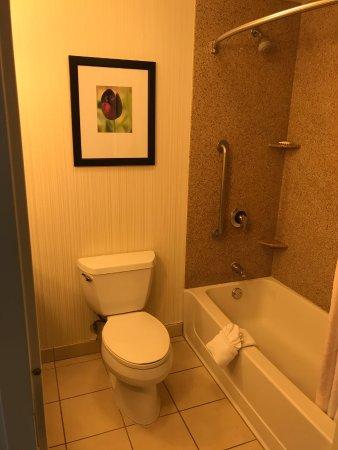 Hilton Garden Inn, Oxnard/Camarillo: shower and toilet