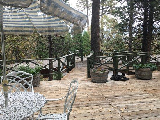 Fish Camp, CA: Room view