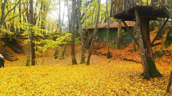 Mengen, Türkiye: Hindiba Doğa Evi