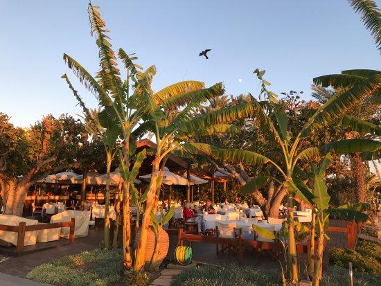 Constantinou Bros Asimina Suites Hotel: Das Kymata A la carte Restaurant am Strand