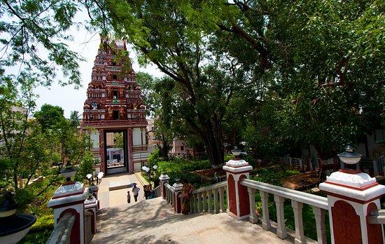 Malleswaram/Sadashivnagar