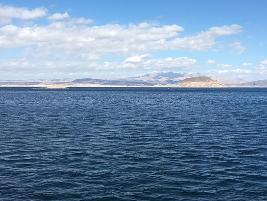 Lake Mead Dinner Cruise (All Las Vegas Tours): photo1.jpg