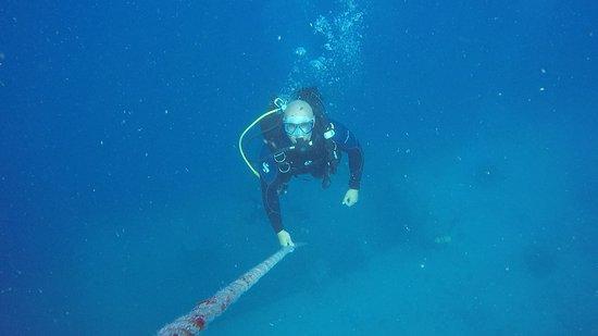 Florida Keys Dive Center: photo4.jpg