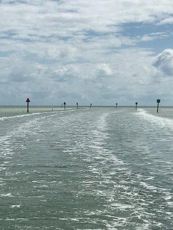 Florida Keys Dive Center: photo6.jpg