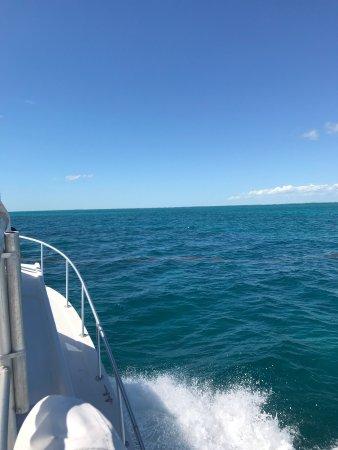 Florida Keys Dive Center: photo7.jpg