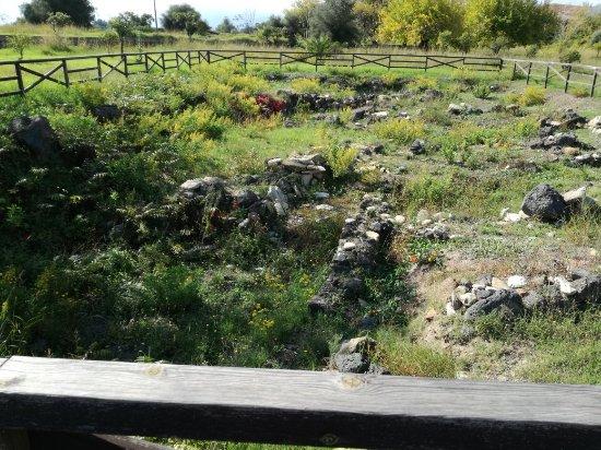 Giardini Naxos, İtalya: IMG_20171102_122257_large.jpg