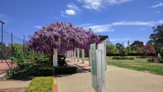 Old Parliament House Gardens