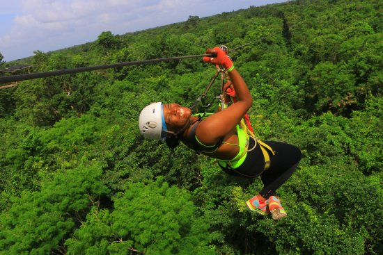 Selvatica: Photo taken while zip-lining during tour