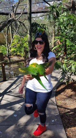 Brevard Zoo : Feeding the birds was spectacular!! I would love to do this again!!
