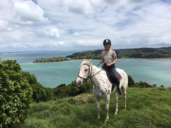 Isla Waiheke, Nueva Zelanda: Stunning blue waters and views from the top