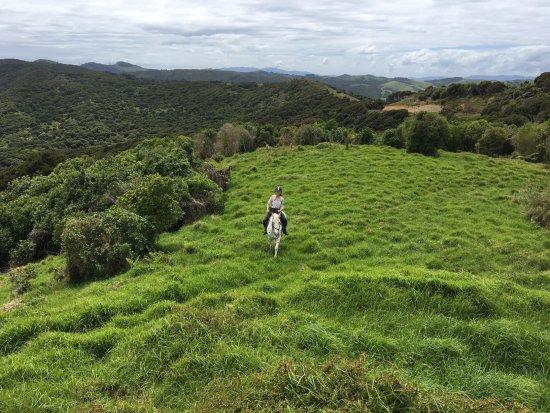 Isla Waiheke, Nueva Zelanda: Breathtaking natural landscapes