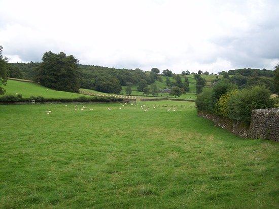 Hawkshead, UK: Stone walled field just across the road from Hill Top Farm