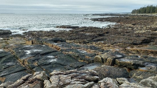 Southwest Harbor, ME: View of the Seawall at low tide.