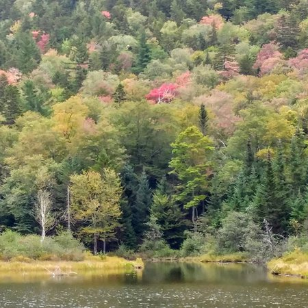 Hart's Location, Nueva Hampshire: Crawford Notch State Park