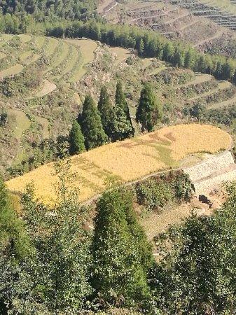 Yunhe County, Kina: IMG_20171029_095512_large.jpg