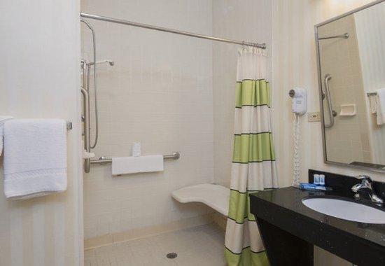 Okemos, Μίσιγκαν: Accessible Guest Bathroom