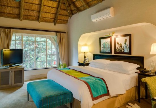 Magaliesburg, Sudáfrica: Luxury Plunge Pool Guest Room