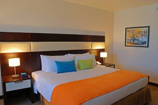 Park Inn by Radisson San Jose: Guest Room