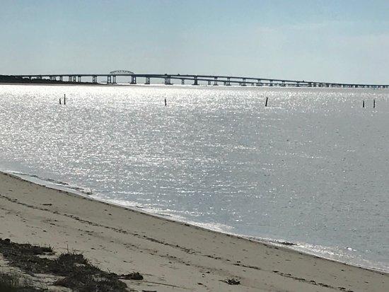 Cape Charles, VA: photo4.jpg