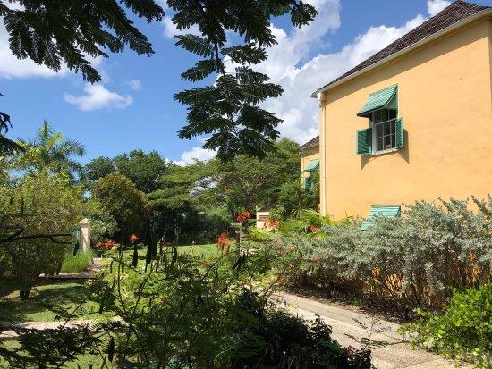 Garrison, Barbados: Back