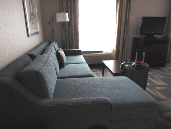 Hampton Inn & Suites Orlando - South Lake Buena Vista: Very nice sofa
