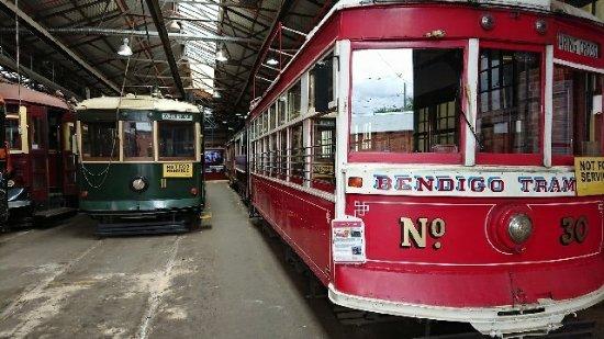Bendigo Tramways: Messaging1509687593038_large.jpg