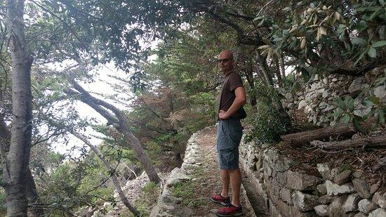 Pico Castelo Viewpoint: IMG-20171101-WA0004_large.jpg