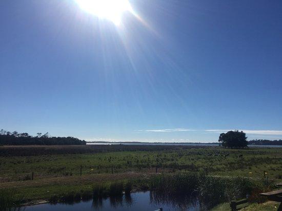 St Helens, Australia: photo1.jpg