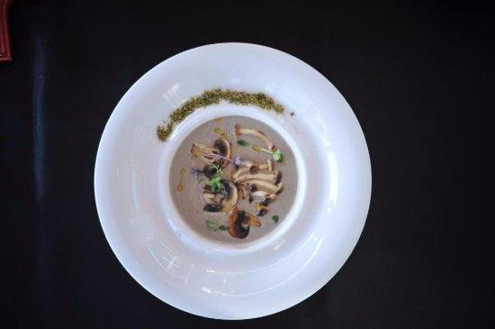 Golem, Albânia: 4 Mushroom Soup