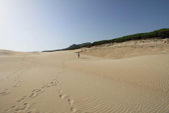Costa de la Luz, Spanien: Düne am Bolonia Beach