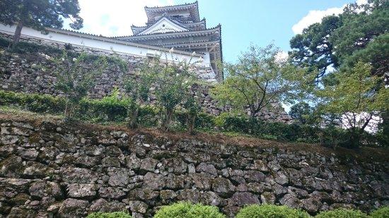 Kochi Castle: DSC_0958_large.jpg