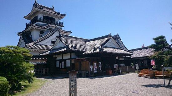 Kochi Castle: DSC_0961_large.jpg