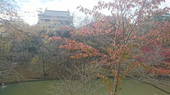 Uedajo Castle: DSC_0051_large.jpg