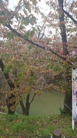 Uedajo Castle: DSC_0053_large.jpg