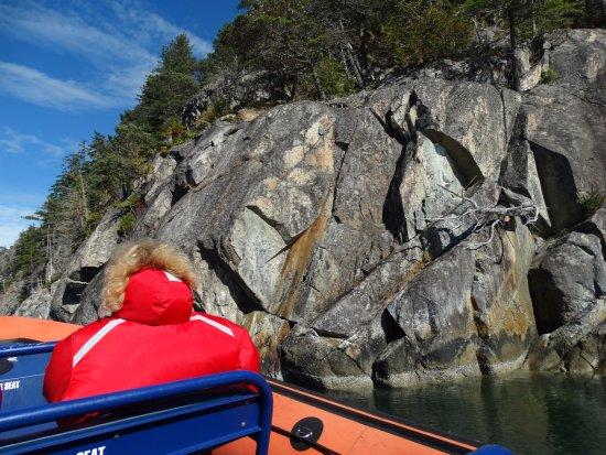West Vancouver, Canadá: Deep Fjord Tour