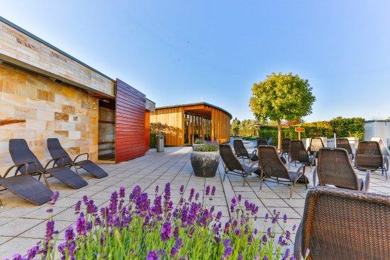 sauna au enbereich picture of europabad karlsruhe. Black Bedroom Furniture Sets. Home Design Ideas