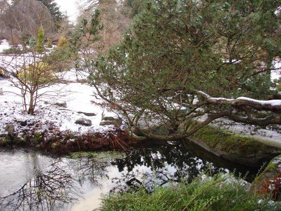 Parque de la Reina Isabel: Queen Elizabeth Park
