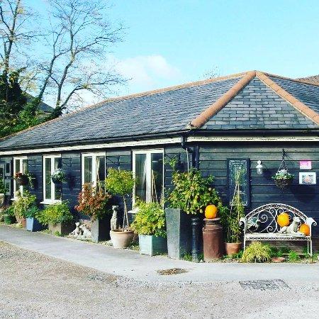 Secret Garden Tea Rooms  Writtle Road Chelmsford