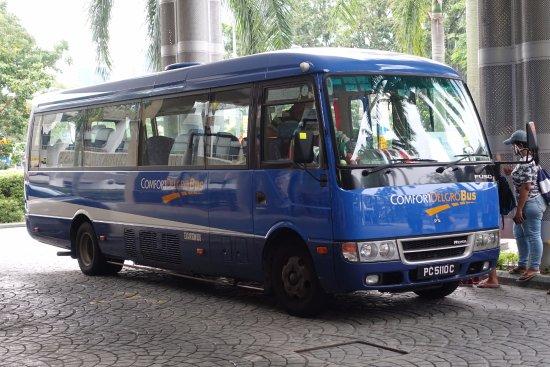 Free bus to casino singapore 10 dollar deposit casinos
