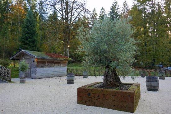 Grossgmain, Austria: Gepflegter Gastgarten der Einkehr