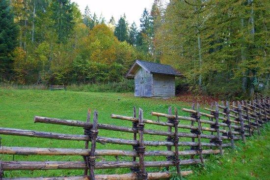 Grossgmain, Austria: Herbstliche Stimmung