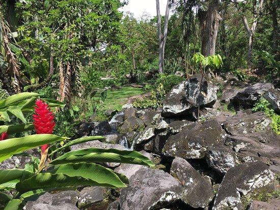 Trois Rivieres, Guadeloupe: Parc Archéologique des Roches Gravées