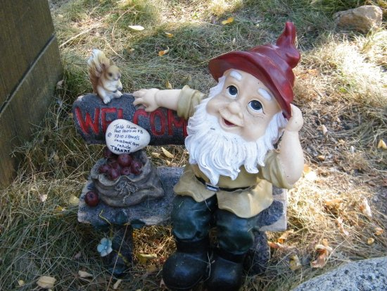 Idyllwild, CA: the gnome