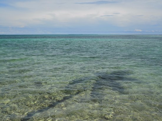 Tobacco Caye, Μπελίζ: Waiting for the sting rays to visit