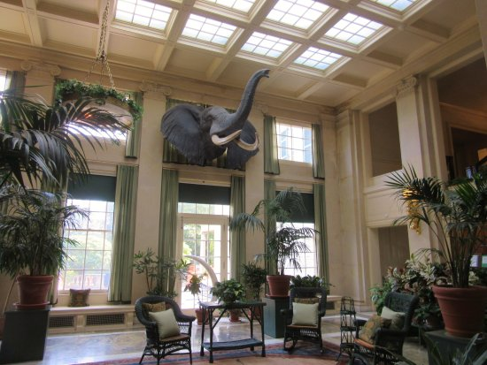 George Eastman Museum: Conservatory