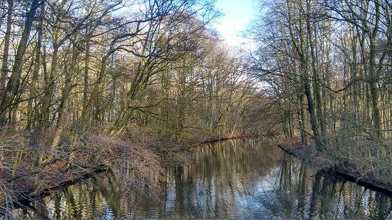 Amsterdamse Bos : Tranquilidade!