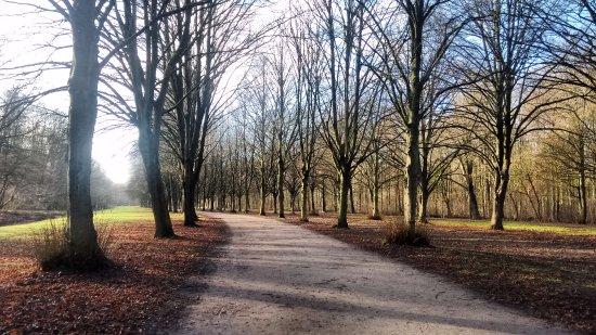 Amsterdamse Bos : A beleza do Outono!