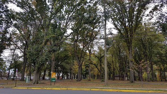 Linden, NJ: The park