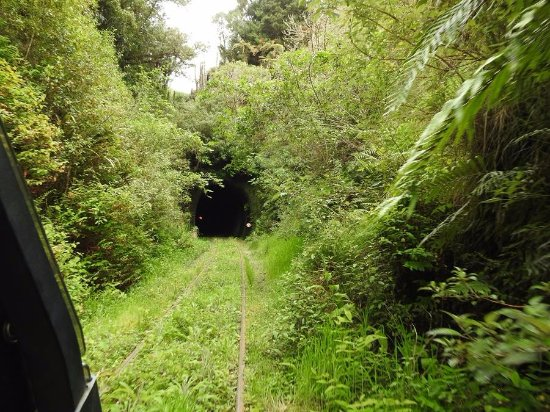 ‪‪Taumarunui‬, نيوزيلندا: Tunnel entrance‬